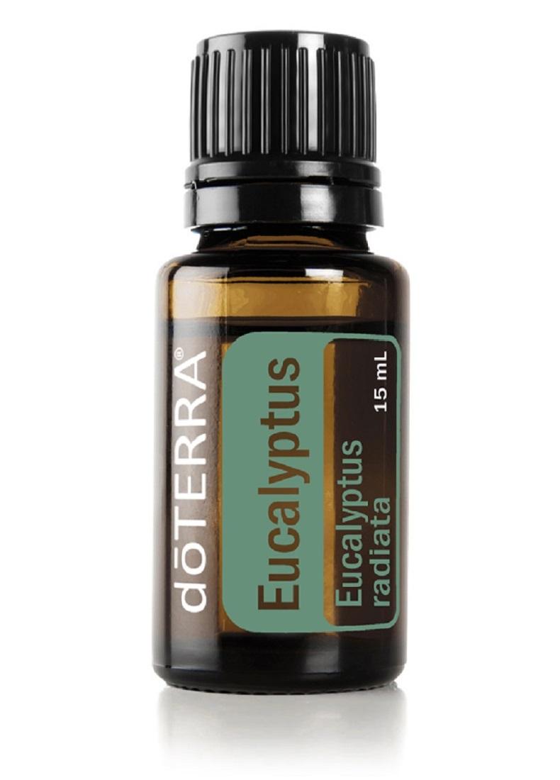 Eucalyptus-Eukalyptus
